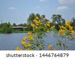 Tha Chin River In Samut Sakhon...