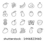 fruit thin line icon set. food... | Shutterstock .eps vector #1446823460