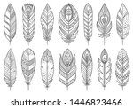 boho feather hand drawn line... | Shutterstock .eps vector #1446823466