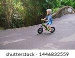 cute little asian 3   4 years... | Shutterstock . vector #1446832559