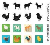 vector illustration of breeding ... | Shutterstock .eps vector #1447035479