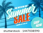 summer sale promotional banner. ... | Shutterstock .eps vector #1447038590
