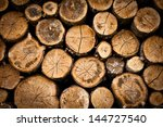 tree stump background | Shutterstock . vector #144727540