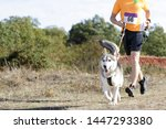 Dog And Man Taking Part In A...