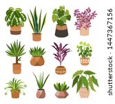 indoor plants flat color... | Shutterstock .eps vector #1447367156