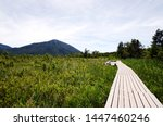 Senjogahara Marshland is an idyllic marshland with nice hiking trails in the Nikko region, JApan