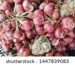 shallot in the basket. shallot... | Shutterstock . vector #1447839083
