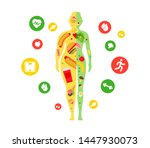 weight loss concept. fat and... | Shutterstock .eps vector #1447930073