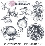 vector collection of... | Shutterstock .eps vector #1448108540