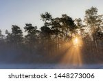 Winter Sunrise Through The...