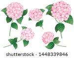 set of pink hydrangea flowers...   Shutterstock .eps vector #1448339846