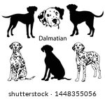 Dalmatian Set. Collection Of...