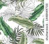 tropical green banana  monstera ... | Shutterstock .eps vector #1448449733