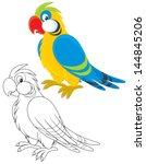 parrot | Shutterstock .eps vector #144845206