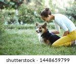 Welsh Corgi Pembroke Dog And...
