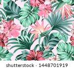 exotic tropical flowers in... | Shutterstock . vector #1448701919