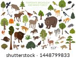 temperate broadleaf forest and... | Shutterstock .eps vector #1448799833