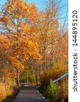 A wetlands boardwalk heads into an autumn woodland - stock photo
