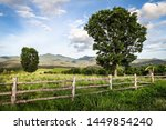 Beautiful Old Wooden Fence In...