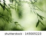 Bamboo Forest Bamboo Leaves In...