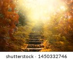 Autumn Backdrop Stairs Sky....