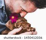 Stock photo cute charming puppy and a bright pink flower close up pet care concept 1450412036