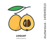 loquat fruit icon  outline with ... | Shutterstock .eps vector #1450450313
