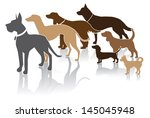 Group Of Dogs Looks At Your...