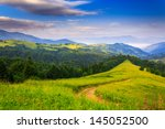 green grass and trees in the mountains under the fresh blue morning sky - stock photo