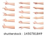 set of woman hand isolated on... | Shutterstock . vector #1450781849
