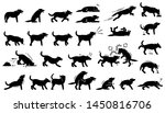 dog actions  reactions ... | Shutterstock .eps vector #1450816706
