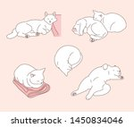 The White Cat Is Sleeping In...