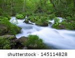 stream in green forest | Shutterstock . vector #145114828