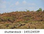 forest cut down | Shutterstock . vector #145124539