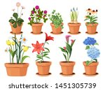 flowers pot. nature cartoon... | Shutterstock .eps vector #1451305739
