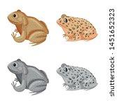 vector illustration of wildlife ... | Shutterstock .eps vector #1451652323