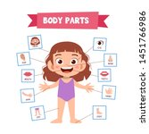 vector illustration of human... | Shutterstock .eps vector #1451766986