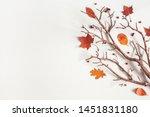 Autumn Composition. Maple...
