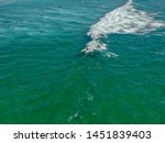 aerial view of surfers waiting  ... | Shutterstock . vector #1451839403