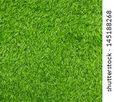 Artificial Grass Texture For...