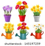 collection of spring and summer ... | Shutterstock . vector #145197259