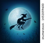 Witch Flying On Broom In...
