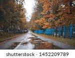 autumn rain in the park during...