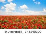 beautiful field of red poppy... | Shutterstock . vector #145240300