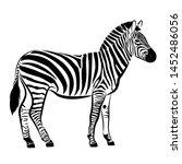 zebra. silhouette of horse with ... | Shutterstock .eps vector #1452486056