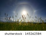 Amazing Sun Halo Above Meadow...