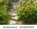 A Stone Path Winding Through A...