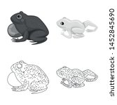 vector illustration of wildlife ... | Shutterstock .eps vector #1452845690