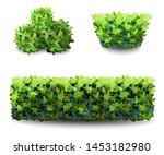 garden bush. green garden... | Shutterstock .eps vector #1453182980
