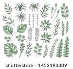 vector set of floral elements ... | Shutterstock .eps vector #1453193309